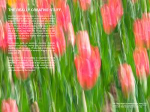 Flowers e-book_SS-12_400px